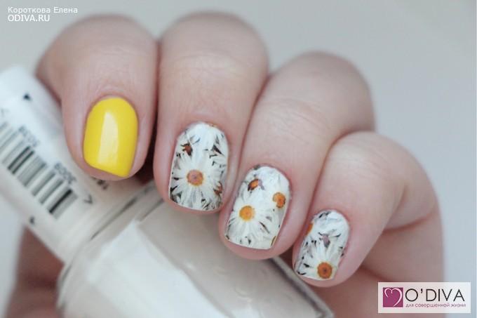 Фото дизайна ногтей с ромашками