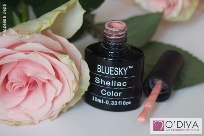 Bluesky Shellac Color A95 15.jpg