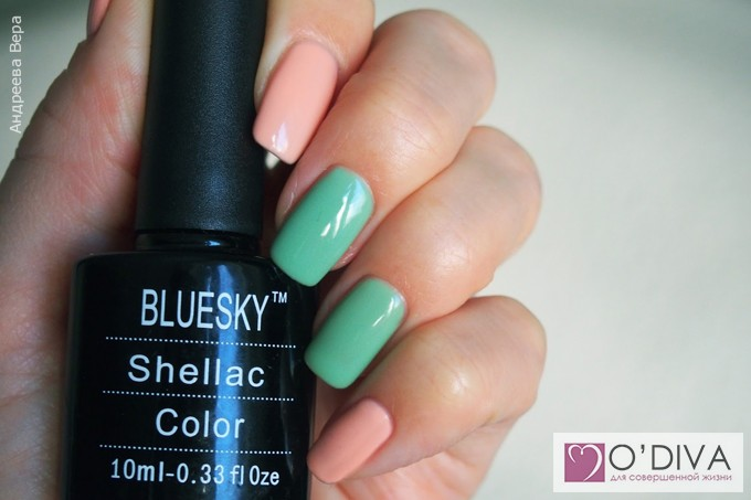 Bluesky Shellac Color A95 и Bluesky one step gel 071 13.jpg