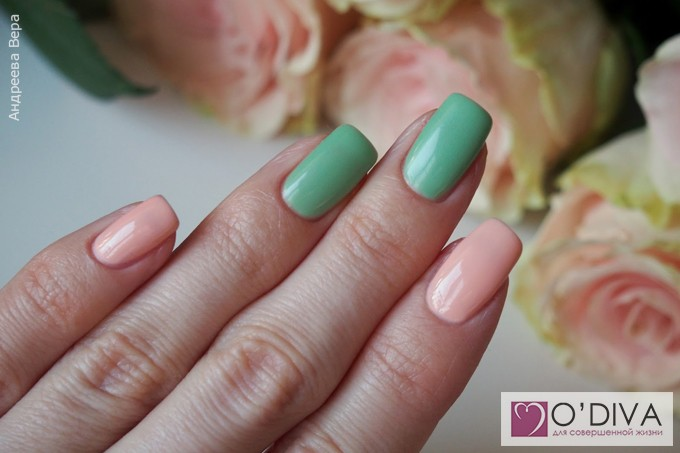 Bluesky Shellac Color A95 и Bluesky one step gel 071 7.jpg