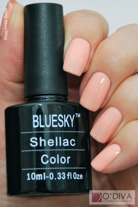 Bluesky Shellac Color A95 19.jpg